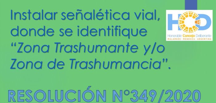 RESOLUCIÓN N° 349/2.020